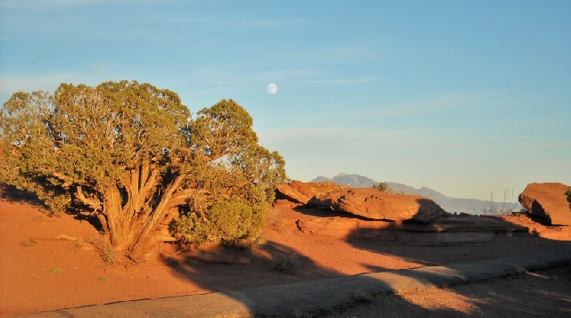 Strolling the paths of Dead Horse Point State Park.