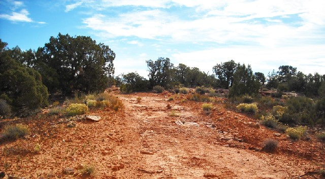 The hiking trail starting at Horse Thief campground.