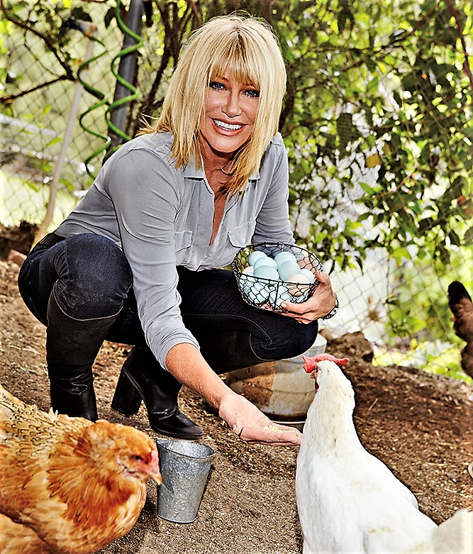Suzanne Somers Chickens