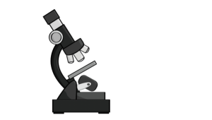 Wider Microscope